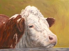 pictures of cow faces | ... FaceDebra Sisson Oil Painting Cow Art Farm Animal Portraits Steer
