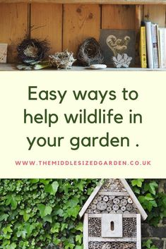 Give wildlife the right environment and they will come to your garden! Wildlife gardening ideas for small, large and urban gardens. #gardening #middlesizedgarden #backyard #garden Bug Hotel, Insect Hotel, Bird Houses, Gardening Tips, Wildlife, Backyard, Yard, Birdhouses, Nest Box