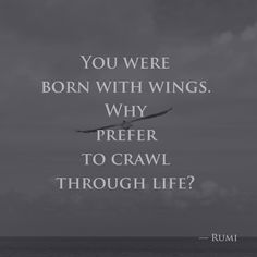 You were born with wings. Why prefer to crawl through life? —Rumi