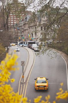 NYC. Manhattan. Central Park East