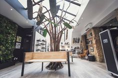 Magasin VOLCOM Marseille. tree design - retail VOLCOM Marseille © cadypso.com
