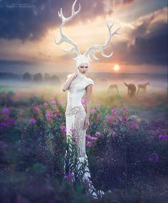 """""""White deer"""" by Margarita Kareva (http://500px.com/photo/78845161/white-deer-by-margarita-kareva)"""
