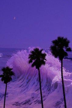 #purple #ocean #nightsky #palmtrees #paradise