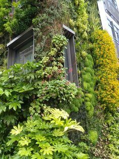 Five Top Gift Ideas for the Plant Lover in Your Life | Delectable Garden | Vertical Garden Planters