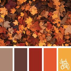 25 Color Palettes Inspired by the Pantone Fall 2017 Color Trends . - 25 Color Palettes Inspired by the Pantone Fall 2017 Color Trends This collection of - Fall Color Schemes, Fall Color Palette, Colour Pallette, Color Combos, Rustic Color Palettes, Orange Color Schemes, Warm Color Palettes, Color Combinations Home, Retro Color Palette