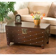 Holly & Martin Caldwell Trunk Cocktail Table in Espresso - CK6224
