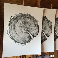 183 year old tree. A story written by a tree. #lintonart #treeringprints #Treelovers #interiorart #hotelart #apartmenttherapy #Officedesign #giftsforhim #giftsforher #etsyseller #uinta #uintamountains #oldtrees