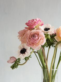 Pretty ranunculus and anemone flower bouquet in a glass vase My Flower, Fresh Flowers, Beautiful Flowers, Flower Names, Cactus Flower, Exotic Flowers, Flowers Bunch, Pretty Roses, Deco Floral