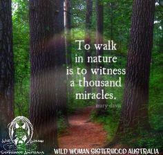 WILD WOMAN SISTERHOOD™ #nature #earthenspirit #rewild #wildwomansisterhood #wildwomen #earth
