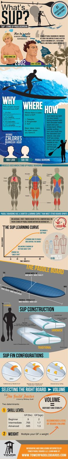 Stand Up Paddle Board Infographic for SUP