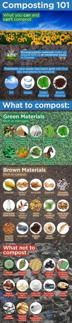 Vegetable Gardening: Composting Infographic