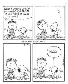 First Appearance: June 19th, 1999 #peanutsspecials #ps #pnts #schulz #snoopy #rerunvanpelt #someone #walks #decide #should #bark #him #woof www.peanutsspecials.com