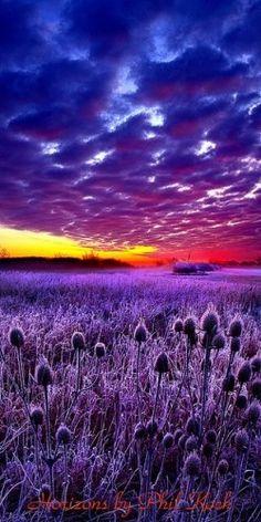 Purple Sunset, Wisconsin  http://www.wpsubscribers.com/?hop=topogiyo  http://www.desktoplightingfast/Zorro123 http://www.laptoptrainingcollege.com http://welbor.553.clicksurecpa.com/