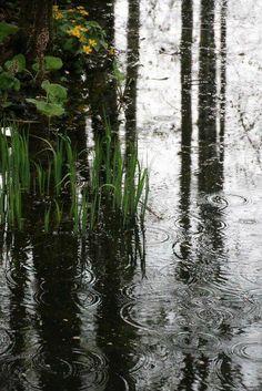waters all around Rainy Day Photography, Rain Photography, Landscape Photography, Surrealism Photography, White Photography, Walking In The Rain, Singing In The Rain, Rainy Night, Rainy Days