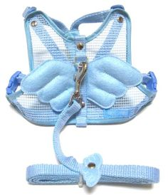 Optodigital Stylish Harness Set with Leash for Dogs, Angel Wings, Small, Blue! cute! I'm trying to decide between this one or the baby pink for Bambi !!! decisions decisions