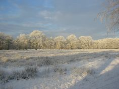 Winterlucht Uffelte