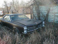 Hybernating '67 GTO