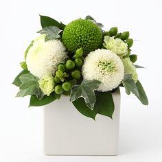 【ネット限定】白とグリーンのピンポンマムのアレンジ