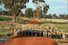 Southern Wheatbelt, Western Australia