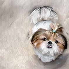 SHIH TZU Canvas Unmounted / Rolled dog pet artwork by STASgallery