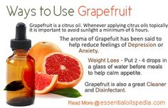 Ways to use Grapefruit Essential Oil. *Can also be used topically (diluted with carrier oil) to reduce cellulite ~ Uniquely Herbal Essential Oil Uses, Doterra Essential Oils, Natural Essential Oils, Yl Oils, Young Living Oils, Young Living Essential Oils, Grapefruit Essential Oil Benefits, Doterra Grapefruit, Best Natural Skin Care
