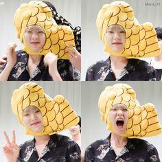 Seventeen Memes, Hoshi Seventeen, Seventeen Debut, Jeonghan, Wonwoo, Cute Wallpaper Backgrounds, Cute Wallpapers, Baby Tigers, Choi Hansol
