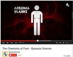 La chimica della paura
