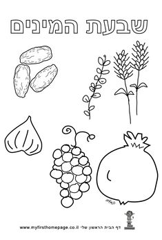 דף צביעה לשבועות - שבעת המינים