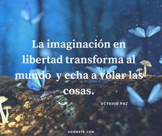 ♥️#frases #citas #vivir #quotes #proverb #imagination #fly #life #inspiration #motivation #followme/ From www.facebook.com/gonmaye