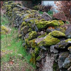 Mossy wall around the corner...
