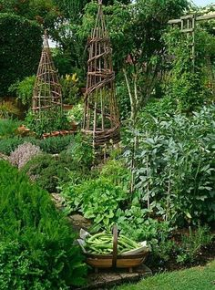 Country Potager by Suzie Gibbons