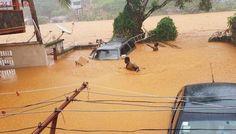 180 muertos en Sierra Leona por fuertes inundaciones