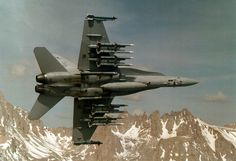 34 best Aircraft images on Pinterest   Airplanes  Plane and Aircraft FA 18 Hornet