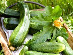 Pakastettu kesäkurpitsa, mielenkiintoinen kokeilu. Liemi maistui ihan hyvältä (sokeriselta). Näitä voi tekstin mukaan lisätä purkkiananaksien ym. sijaan kakkujen väliin jne. Pitää kokeilla. Pakastin itse lientä mukaan pussiin. Cucumber, Zucchini, Food And Drink, Vegetables, Drinks, Garden, Recipes, Sauces, Drinking
