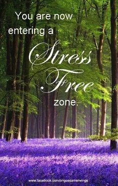 You are now entering a stress free zone Lavender Cottage, Lavender Garden, Lavender Fields, Pretty Pictures, Cool Photos, Pretty Pics, Hampshire England, Beautiful World, Beautiful Scenery