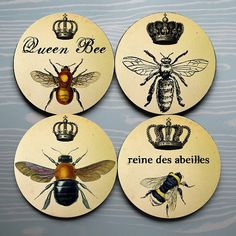 ≗ The Bee's Reverie ≗
