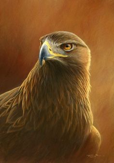 Golden Eagle by Jeremy Paul Wildlife Paintings, Wildlife Art, Cute Creatures, Beautiful Creatures, Eagle Wallpaper, Eagle Art, Wolf Spirit Animal, Nature Artists, Animal Totems