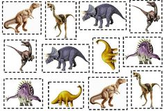 Dinosaurs                                                                                                                                                                                 Más Dragons, Dinosaur Photo, Dinosaurs Preschool, Summer Camps For Kids, Prehistoric Creatures, Dinosaur Birthday, Jungle Animals, Toddler Activities, Dinosaur Activities