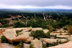 Enchanted Rock State Park, Texas photo taken from the top of the dome, misty and dark day, but always a fun climb!