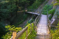 Farenbachtobel Bezaubernder Spaziergang mit Kneipp Kur Ausgangspunkt dieser Wanderung ist beim Bahnhof Elgg, von wo aus ein markierter Wanderweg entlang der Bahnhofstrasse durch Quartiere zum Waldrand und zum Eingang des Farenbachtobels führt. Durch das lauschige, schattige Farenbachtobel, am Mühlenweiher und einer Kneippanlage, die zum Kühlen der Füsse einlädt führt der Weg über viele Stufen und kleine Brücken bis zur Guhwilmühle. Garden Bridge, Outdoor Structures, Medieval Town, Wine Country, Road Trip Destinations, Switzerland