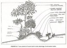 Temperate Climate Permaculture: Permaculture Projects