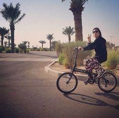 DAHON folding bike Instagram post by nosugarnograinomeat • Feb 12, 2017 at 4:50am UTC