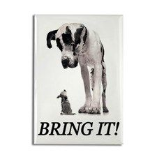 Bring It! Rectangle Magnet
