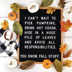 Repost from using - Dont think Im above hiding in a pile of leaves to avoid small talk with neighbors either. Felt Letter Board, Felt Letters, October Quotes, Fall Humor, Autumn Aesthetic, Happy Fall Y'all, Hello Autumn, Fall Crafts, Fall Halloween