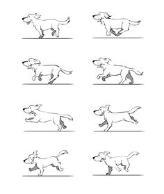 「dog run anime」の画像検索結果 Animation Sketches, Animation Reference, Animal Sketches, Animal Drawings, Manga Drawing Tutorials, Dog Drawing Tutorial, Running Drawing, Anim Gif, Run Cycle