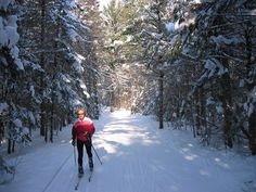 Algoma Country is home to some of the best cross country ski trails in Ontario. Winter Is Here, Winter Time, Ontario Travel, Cute Posts, Cross Country Skiing, Winter Activities, Winter Scenes, Cool Pictures, Places To Go