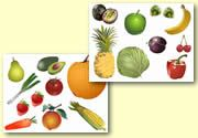 Free Printables: Healthy Eating, Senses, Our Bodies, Growing, Hygiene, and Healthy Living