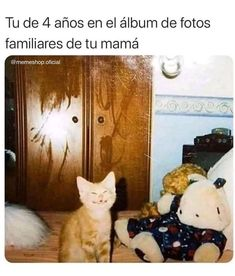 Funny Spanish Memes, Funny Memes, Animal Crossing Funny, Troll Face, Humor Mexicano, Barbie, Mood Pics, Animal Memes, Yandere