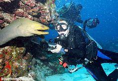 Diving in Honduras, Roatan Honduras Roatan, Scuba Diving, Adventure, Fictional Characters, Diving, Adventure Movies, Fantasy Characters, Adventure Books