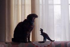 恐竜になる練習